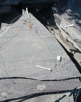 silvermist slab