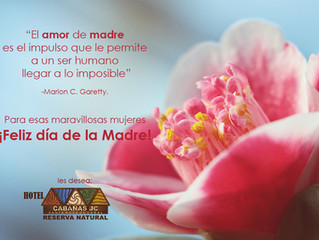 ¡Feliz Día de la Madre! les desea Hotel Cabañas JC