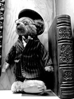 Bookshop Bear