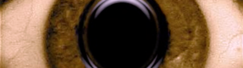 Screen Shot 2021-04-10 at 4.05.55 PM.png