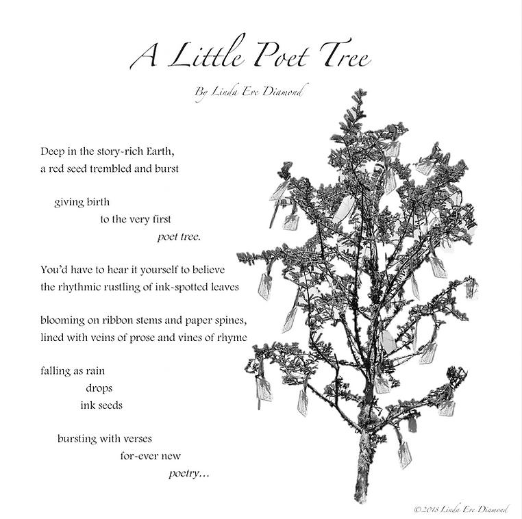 Poet Tree Poetry