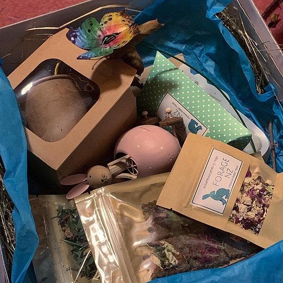 Christmas Guinea Pig Box