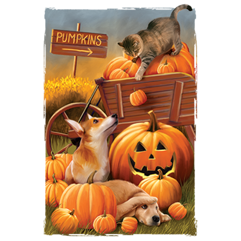 Fall Dogs and Cat with Pumpkins Transfer