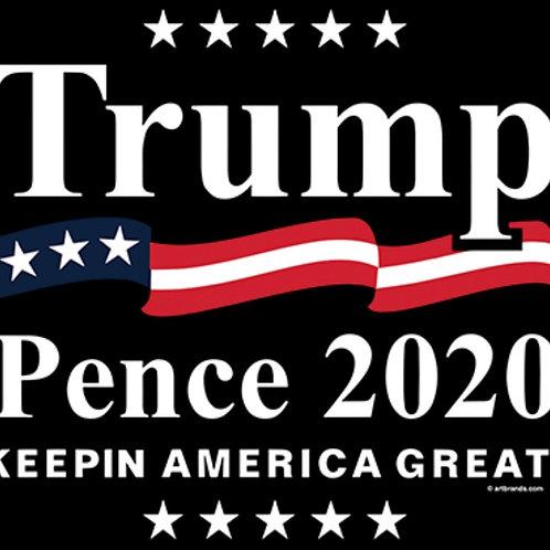 Trump Pence 2020 Transfer