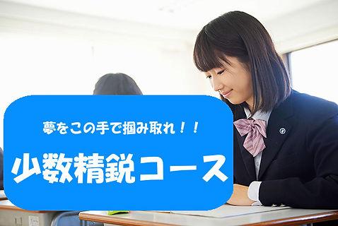 少数精鋭コース.jpg