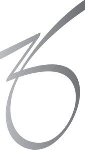 ZO-Icon-Silver loge, cicignonklinikken f