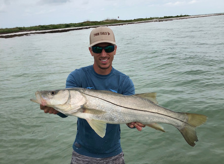 The Summer Time Snook