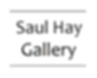 saul hay.png