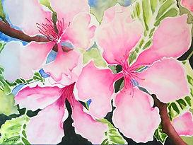 Blossom%20Awakening_edited.jpg