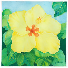 Yellow Hibiscus Hawaii State Flower.jpg