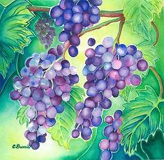 BURRIS - cluster of grapes.jpg