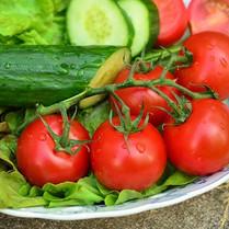 Cucumber/Tomato Salad w/Grapefruit Vinaigarette