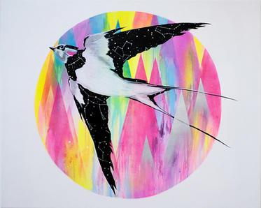 Rare Cosmic Bird
