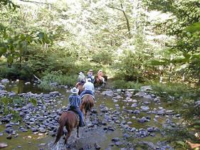 Horse-ride-21.jpg