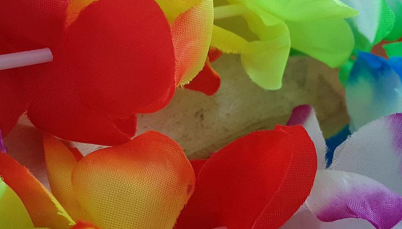 Colorir o Coração