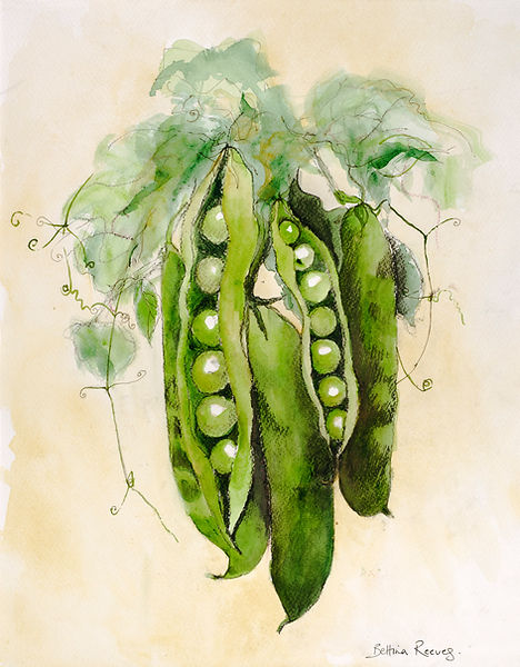 Peas in a Pod - painting by Bettina Reeves