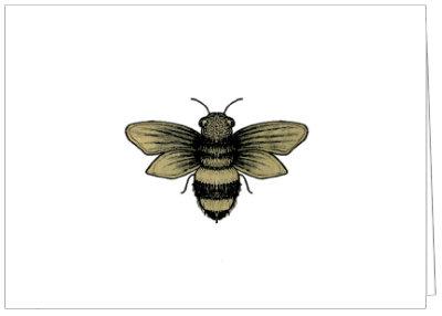 AO592 - BEE