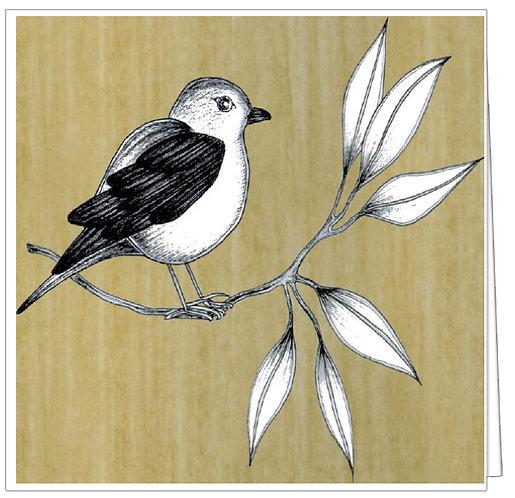GGE206 - BIRD