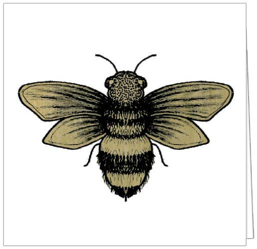 GGE184 - BEE