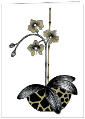 AO582 -   ORCHID IN LEOPARD POT