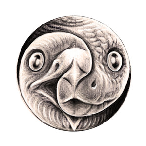 Eagle and Serpent - Yin Yang