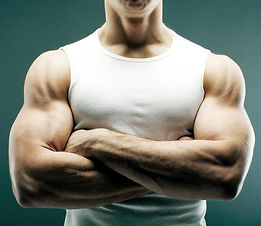 muscular_male_arms_forearms_biceps_main.