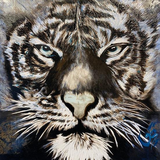 TIGER #7