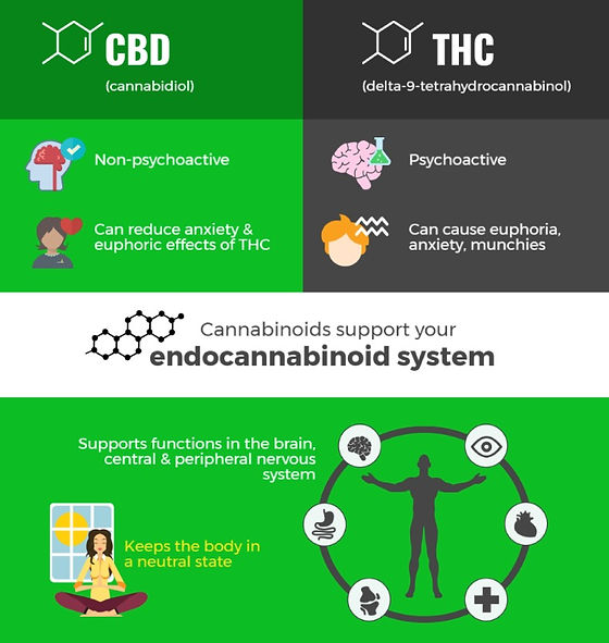 cbd-vs-thc-info_edited.jpg