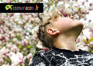 introbild utställning fotom jr_a.jpg