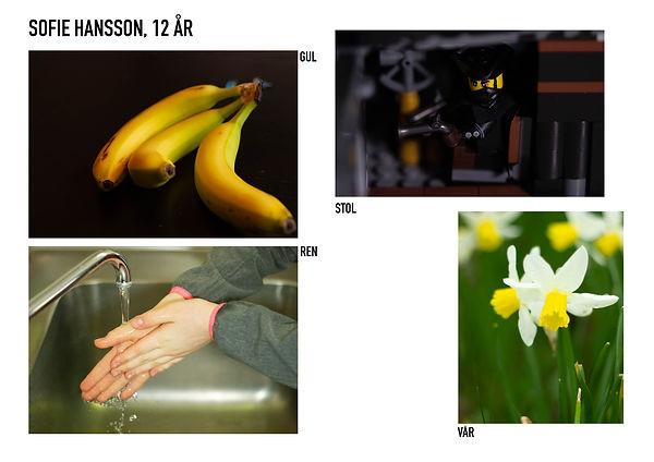 SOFIE HANSSON.jpg