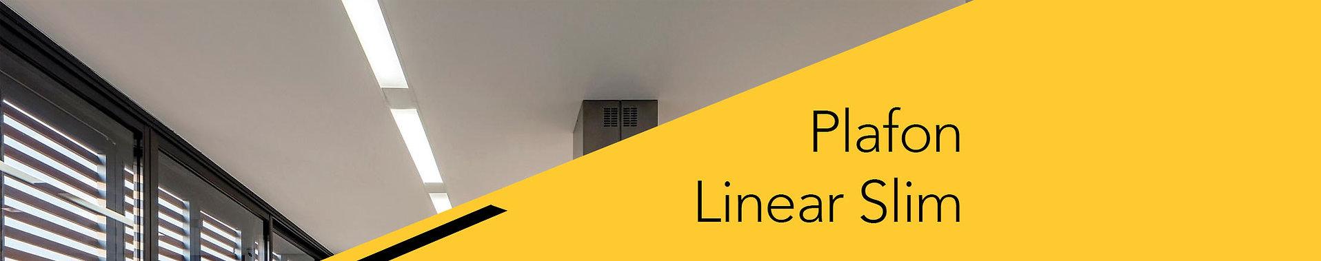 Topo_produtos_linear.jpg
