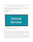 annualservice.png