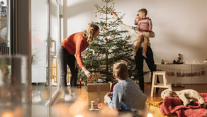 Real vs Fake Christmas Trees - What's more eco-friendly?