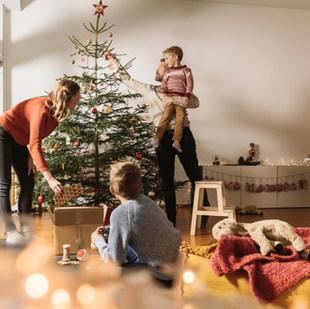 Rodinné vánoční stromeček