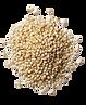 quinoa détouré .png