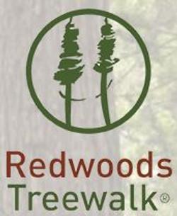 redwoodtreewalk