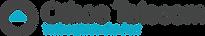 Othos_telecom_logo