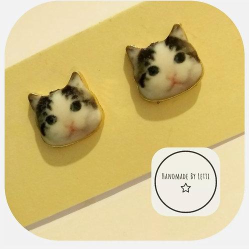 Dave the cat stud earrings / enamel