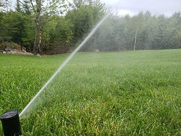 automated sprinkler system rainbird 5000 irrigation