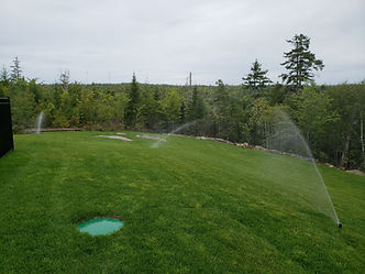 Newly sodded lawn with irrigation system