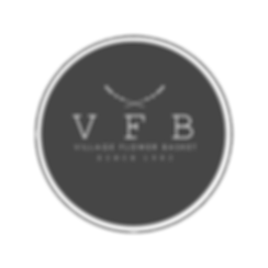 VFB Transparent logo white behind text.p