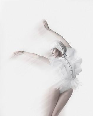 Swan done 1print.jpg