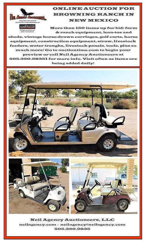 golf cart flier.pub.jpg