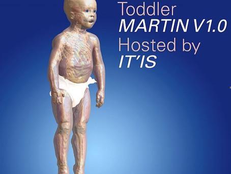 The MARTIN Model