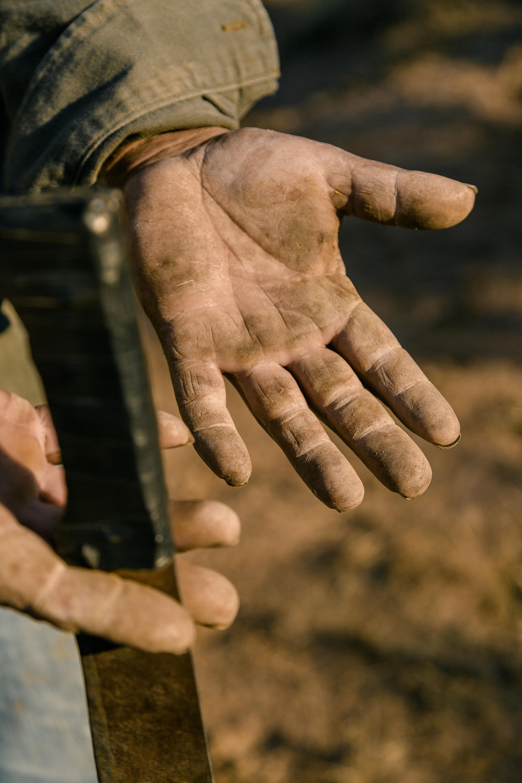Field worker's hands