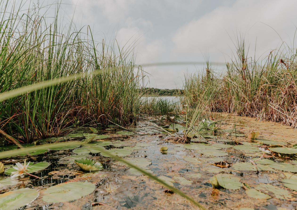 Laguna Chabela