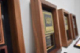 Golden Image Awards6.jpg