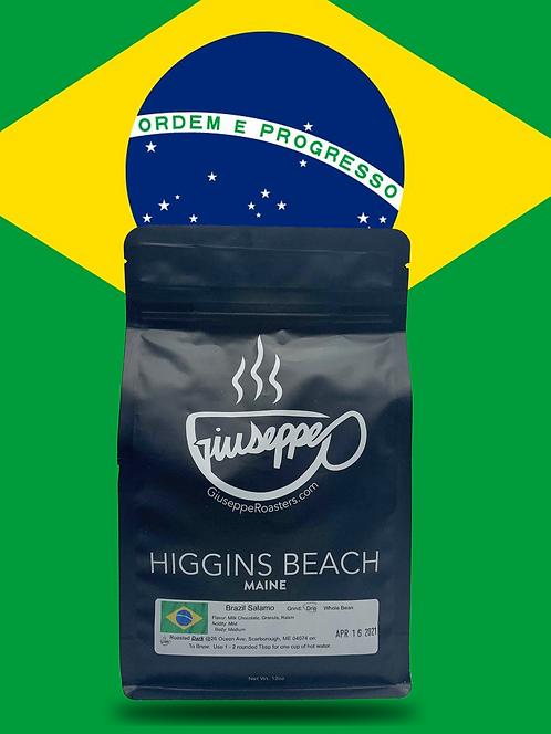 Brazil Salamo