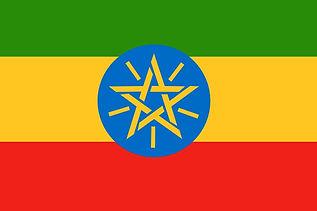 ethiopianflag_edited.jpg