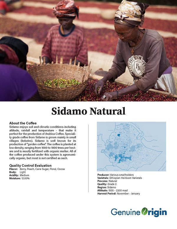 factsheet-Ethiopian Sidamo.jpg